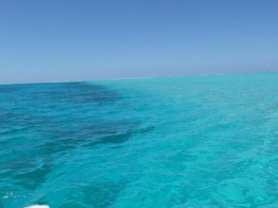 Poetaina Day Tours : le lagon turquoise