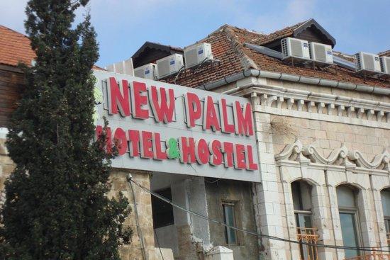 New Palm Hotel & Hostel : Abraham Hostel