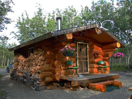 Wolfridge Bed & Breakfast: Kleine Hütte