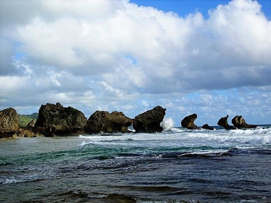 Round House : View of Bathsheba Beach and Lion Rock