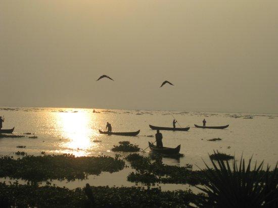 Deshadan Backwater Resort : The beautiful lake at sunrise.