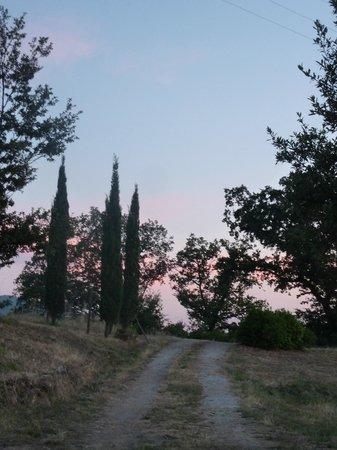 Hotel Prategiano - Maremma Toscana: Alta Maremma Toscana