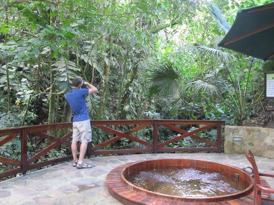 Nayara Resort Spa & Gardens: Hot tub secluded in the jungle.