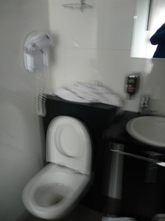 Hotel Ibis Styles Rennes Centre Gare Nord : Toilettes