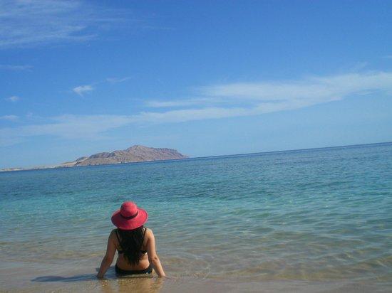 Baron Palms Resort Sharm El Sheikh : вид на остров Тиран с пляжа