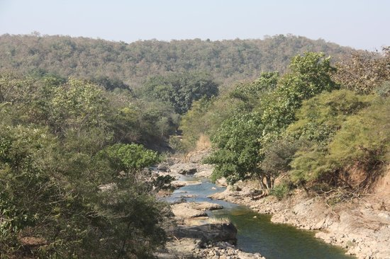 Kamleshwar Dam: Stream beyond the dam flowing into the Gir Forest