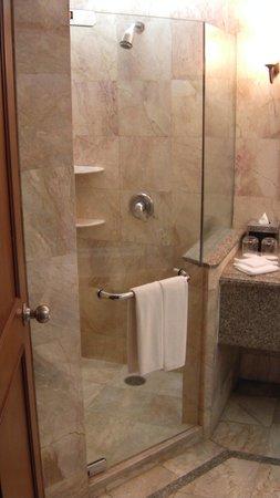 Century Park Hotel: Shower