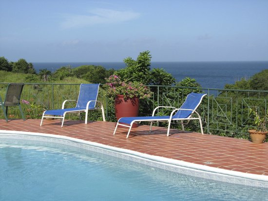 Top O' Tobago Villa & Cabanas: Pool with a view