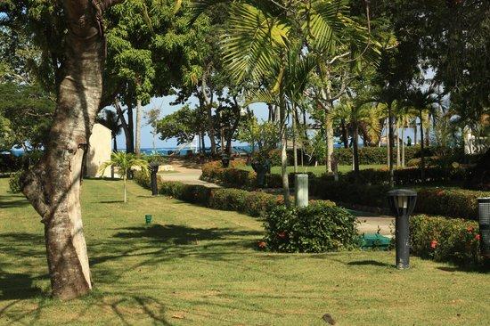 Hotel Beach House Playa Dorada : La plage vue de notre édifice 13.