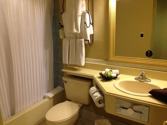 Radisson Hotel & Suites Guatemala City : bathroom