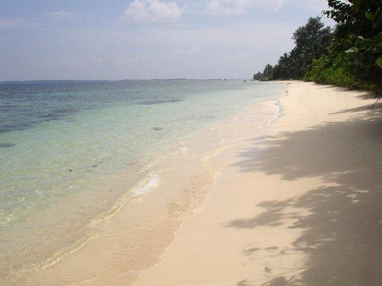 Equator Village : Пляж отеля