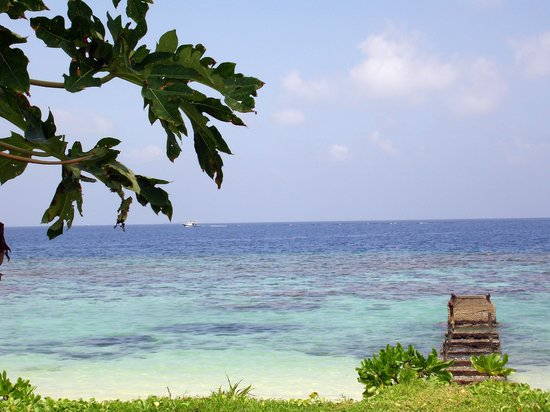 Equator Village : Вид от отеля
