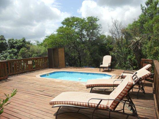 Kariega Game Reserve - All Lodges : Private pool