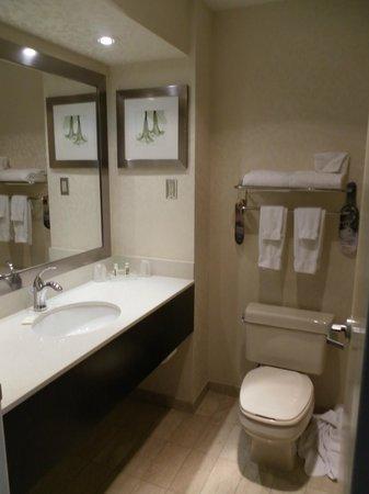 Holiday Inn & Suites - Ambassador Bridge: Bathroom