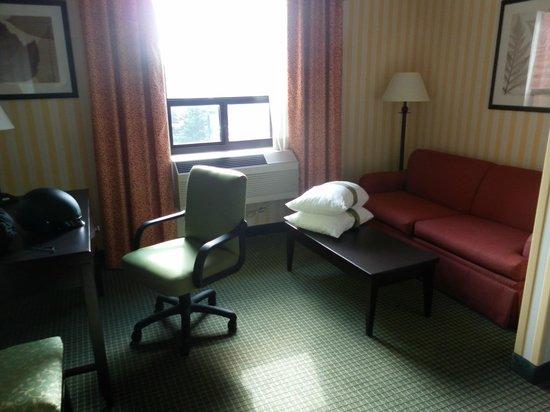 Holiday Inn & Suites - Ambassador Bridge: Small Living room