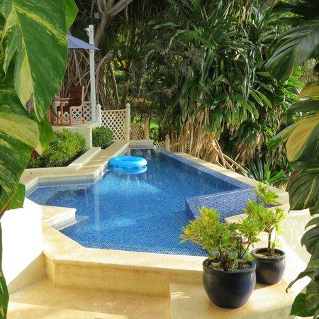 Casa Oceano: The infinity pool on the beach
