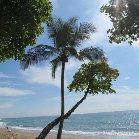 Casa Oceano: Clear days