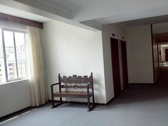 Hotel Plaza Blumenau: Área