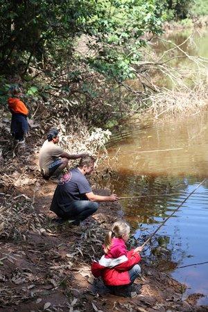 Casa Hospedaje El Gato : scène de pêche aux piranhas