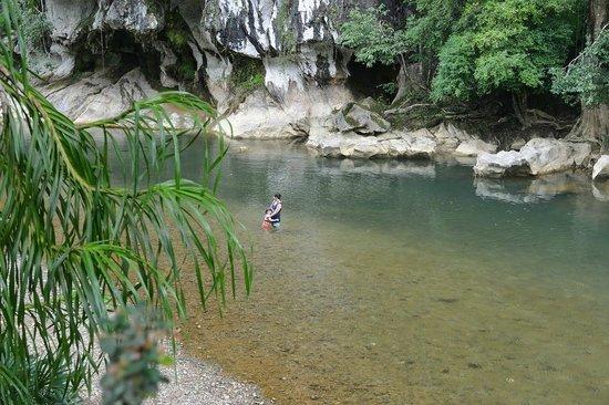 Art's Riverview Jungle Lodge: Fluss vor dem Hotel