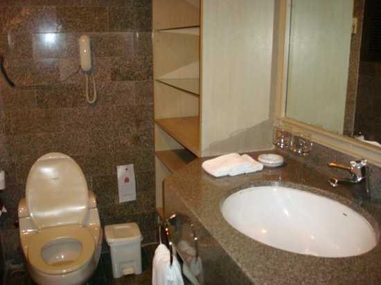 Grand President: bathroom