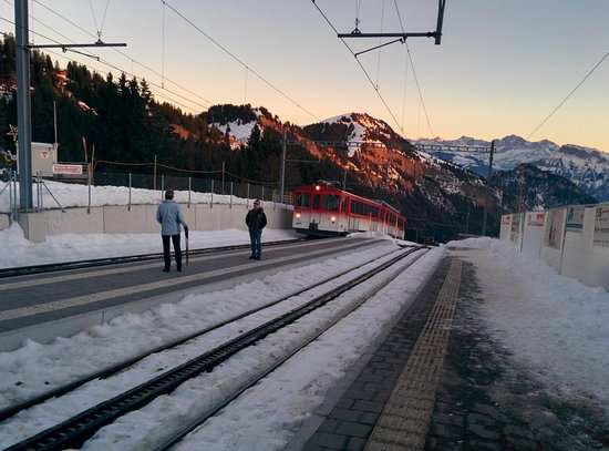 Mineralbad & Spa Rigi-Kaltbad : Rigi Kaltbad Station mit Bahn