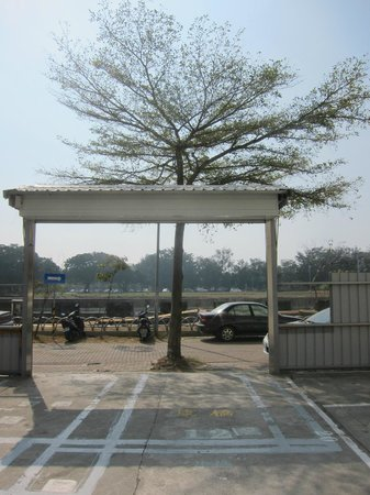 Kindness Hotel - Min Sheng: Tree in the midle of the Parking lot entrance :D
