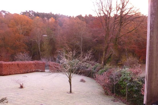 Marion's Bed & Breakfast: Frosty morning, view from apartment