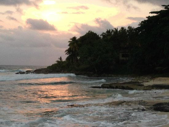 Renaissance St. Croix Carambola Beach Resort & Spa: sunset on the beach