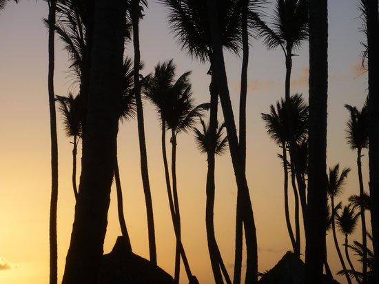 Sirenis Punta Cana Resort Casino & Aquagames: El sol se levanta