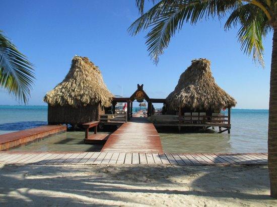 Ramon's Village Resort : dive shop