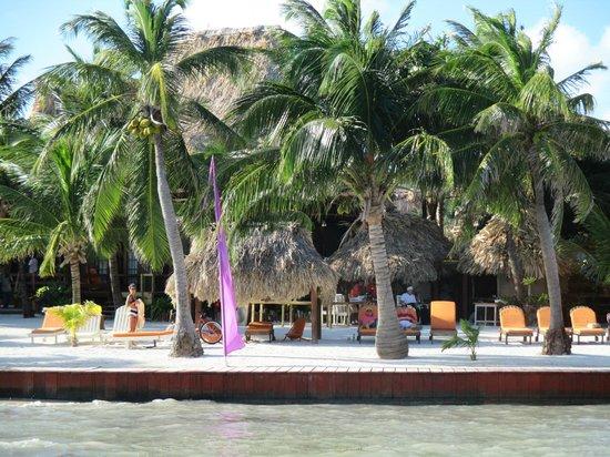 Ramon's Village Resort : beach area