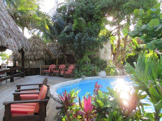 Ramon's Village Resort : pool area