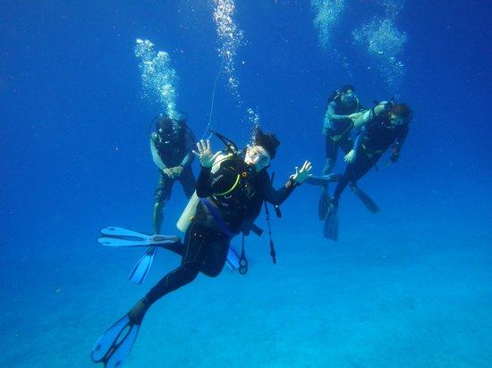 Phocea Mexico: plongée paula