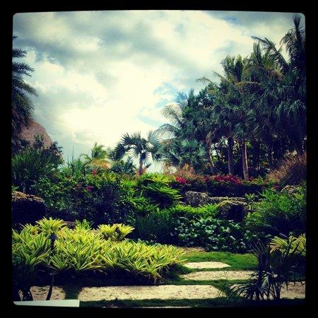 Ocean House: Gardens!