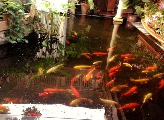 Baan Souchada Resort & Spa: ;-)