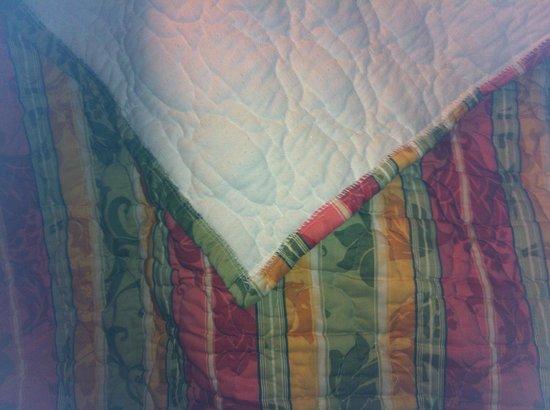 Quality Inn: the thing bedding