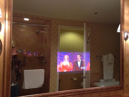 The Hermitage Hotel: TV in the bathroom mirror.