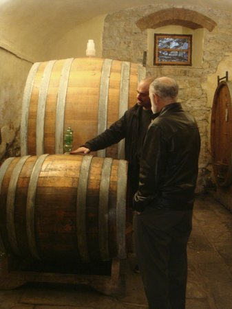 Alessandro Cammilli Private Tours: Visit to winery
