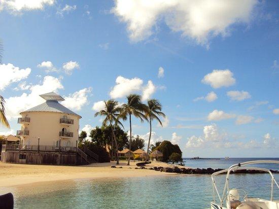 boucaniers - Picture of Club Med Buccaneer's Creek, Sainte ...