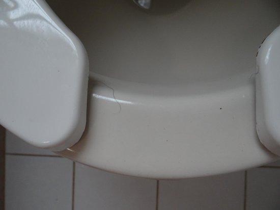 Villas Ecotucan: Un poil sur les wc !!