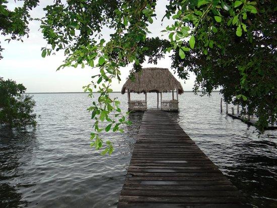 Villas Ecotucan: Ponton sur la lagune