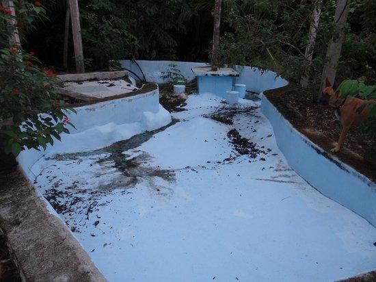 Villas Ecotucan: La piscine abandonnée