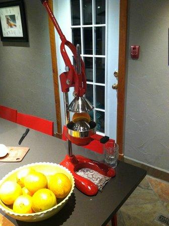 Paintbox Lodge: Citrus press