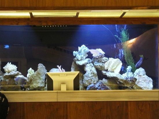 The Imperial Hawaii Resort at Waikiki: The Reception Aquarium..!