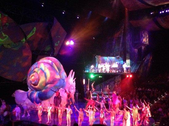 Mystere by Cirque Du Soleil: Larry Pictures
