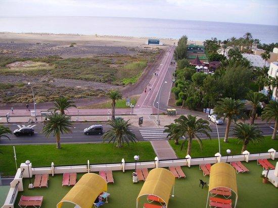 Palm Garden Apartments : La mer vue de la chambre