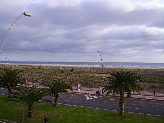 Palm Garden Apartments : La mer, vue de l'hôtel