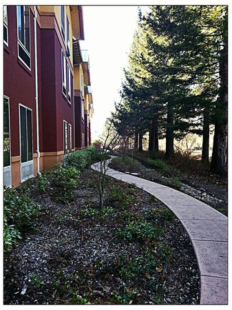 Hilton Garden Inn Sonoma County Airport: Peaceful path along back of building