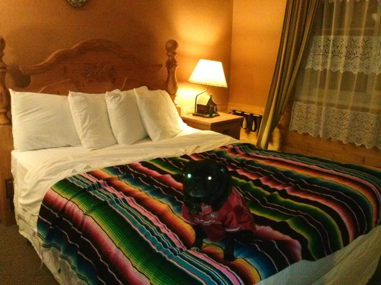 Shasta Inn: Our room & pup (blanket is ours)